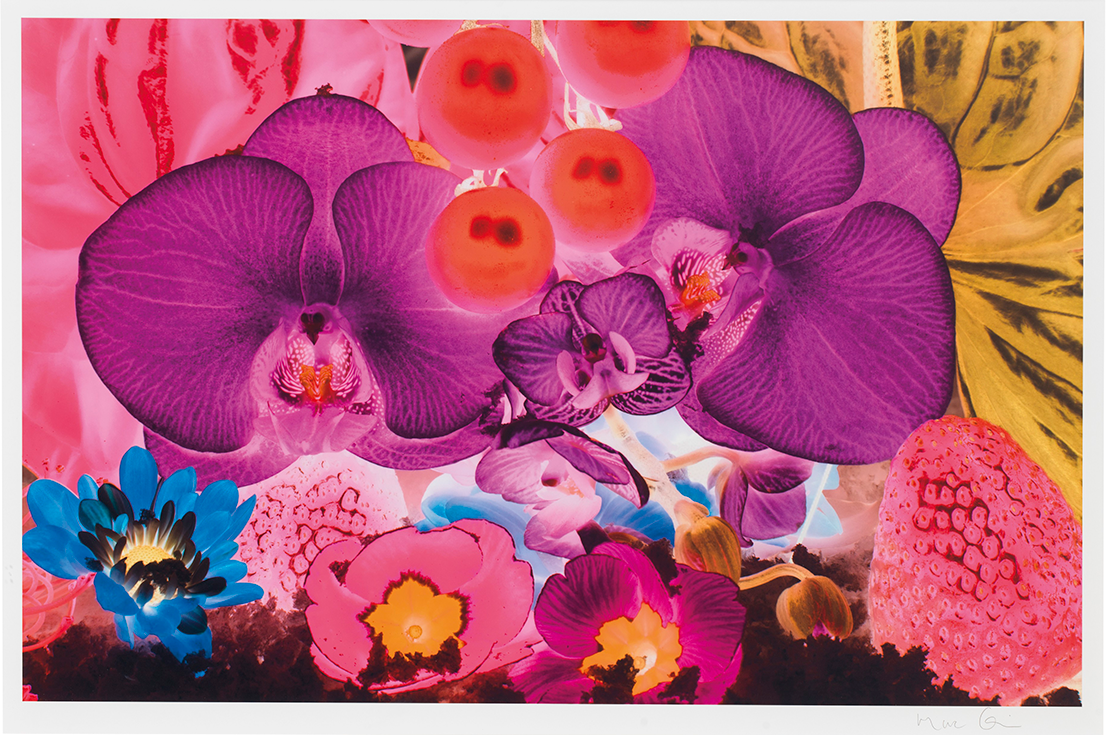 Marc Quinn (b. 1964, United Kingdom) At the Far Edges of the Universe, 2010. Seven digital pigment prints in colors. 27.5x41 inches each